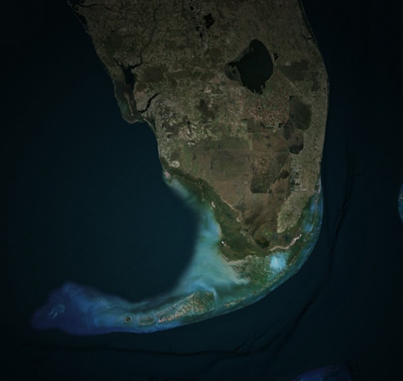 Satellite view of Florida coast