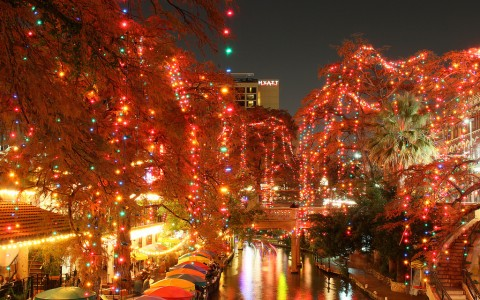 a body of water surrounded by trees with christmas lights on them
