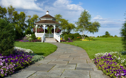 White gazebo surrounded by flowers