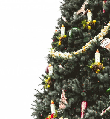Christmas tree hung with popcorn garlands candles candy canes and other decorations dominating half of frame against a background of pure white 5a2848ab18ded 473x594