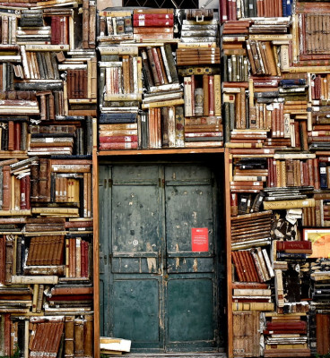 A closed doorway amid a wall of books