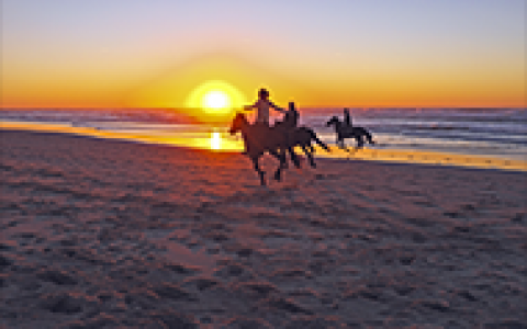3 people cantering on horses along the shore