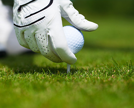 man with white glove playing golf  Image