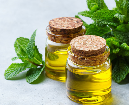 massage oils and mint leaves Image