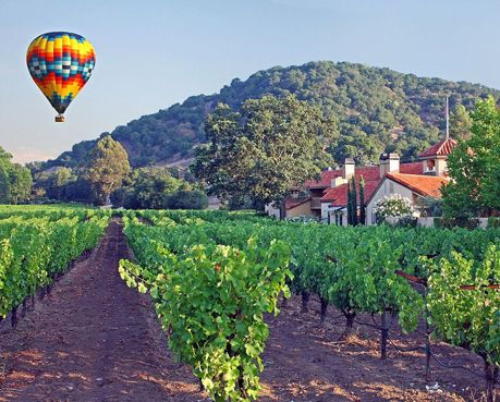 Red, yellow and blue hot air balloon over vineyards