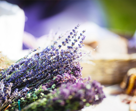 bunch of lavendar Image