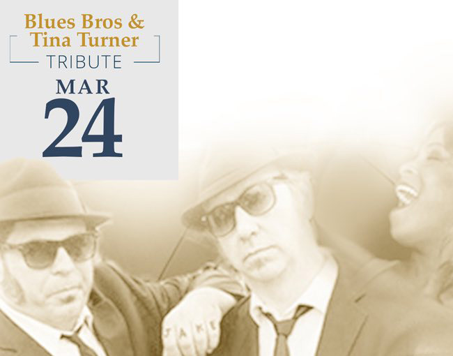 blues bros and tina turner band