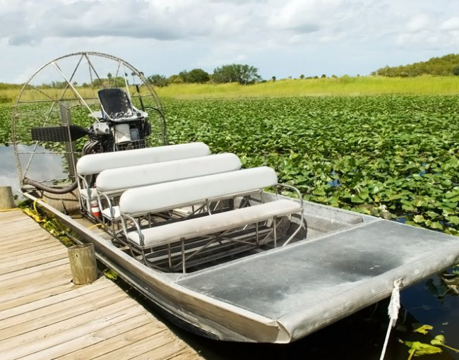 an airboat at a dock surrounded by greenery floating in the water