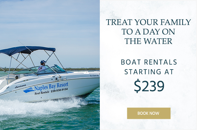nbr popup boatrental