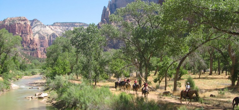 people horseback riding along the river