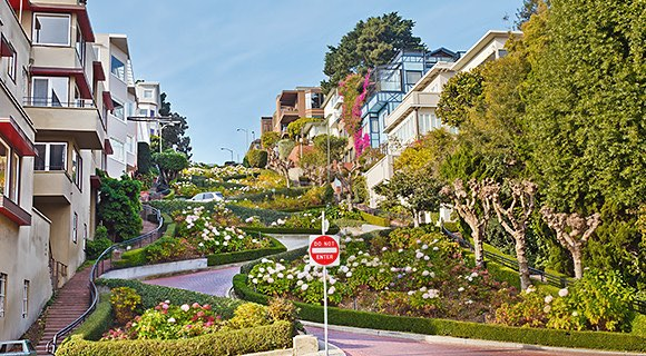 Lombard street intersection surrounded by houses