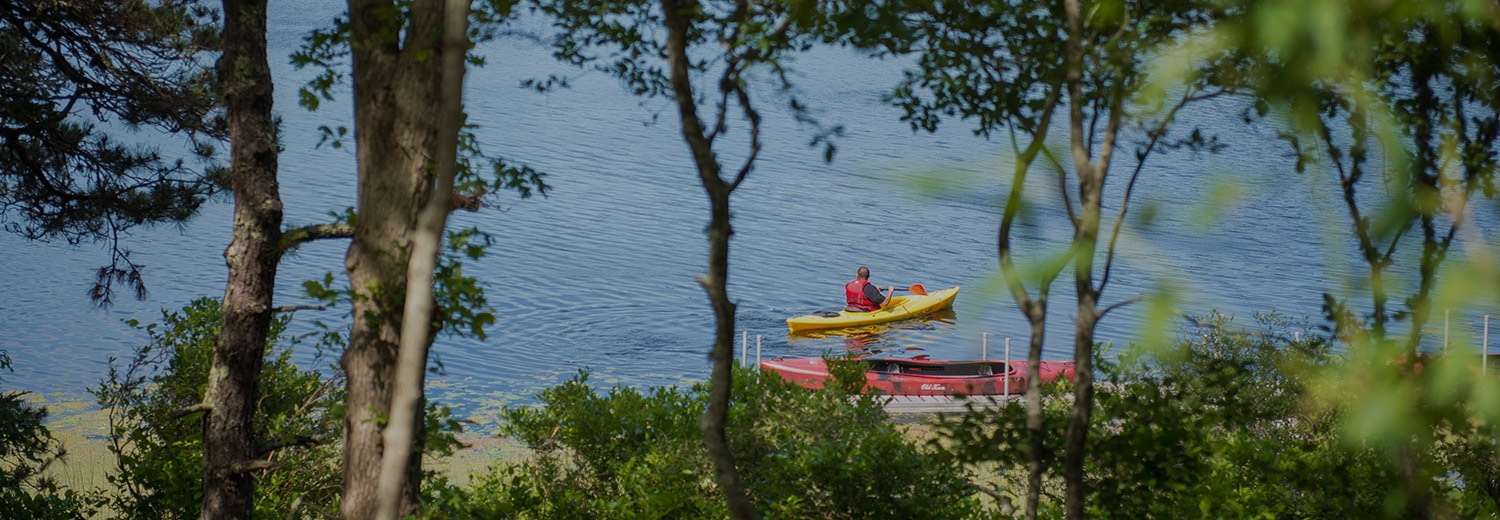 people in kayaks along the shore