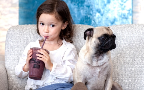 Girl sitting on a couch drinking a smoothie with her pet pug