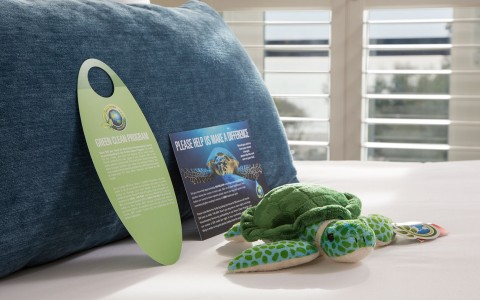 Ocean View stuffed animal turtle on bed- environment