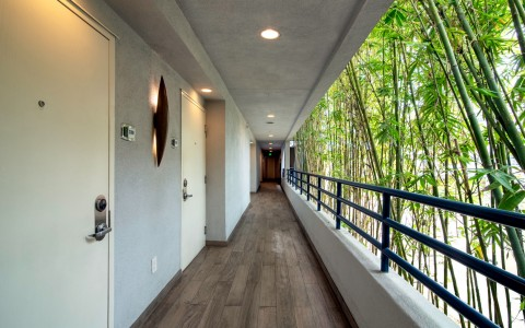 Exterior Bamboo Guest Hallway