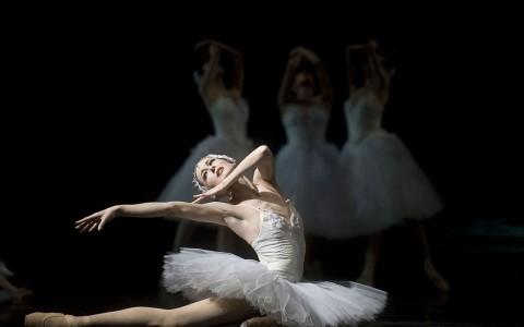 picture of ballerina from Swan Lake