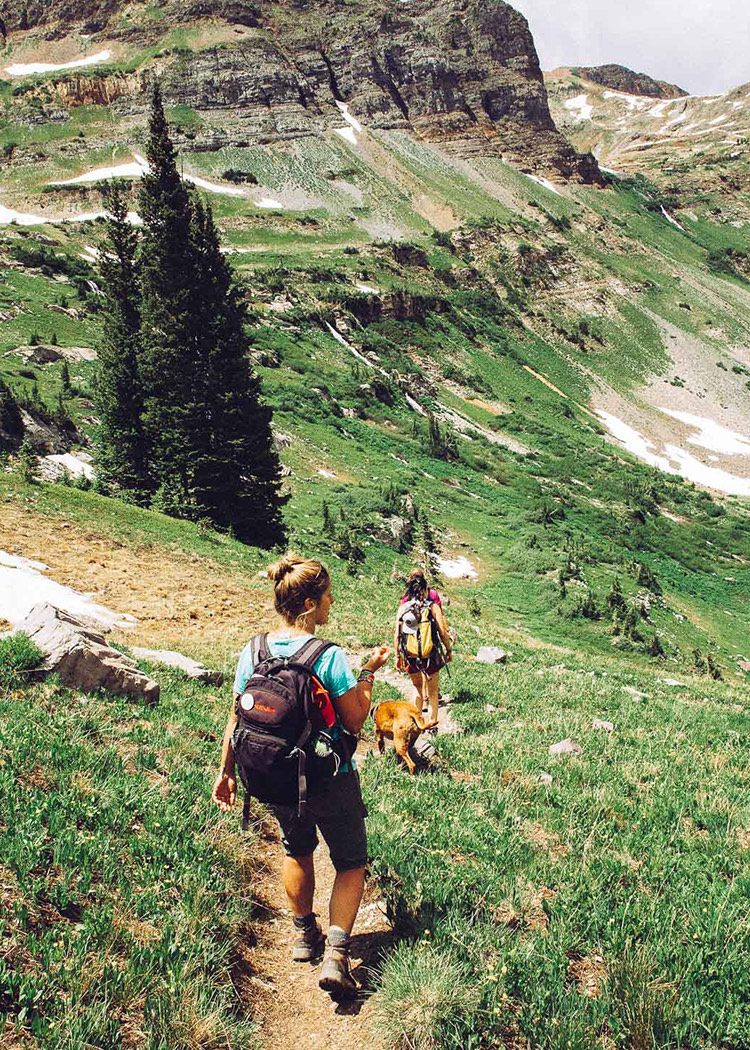 two friends hiking down the mountain with a dog and backpacks