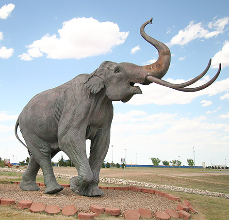 elephant statue, blue sky and green grass surrounding it