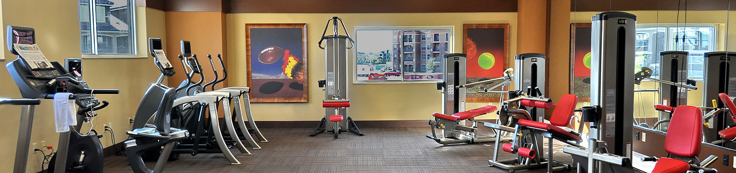 gym with weight machines, ellipticals, treadmills and weight bench