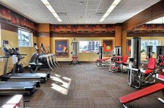 gym with treadmill, ellipticals, and weight machines