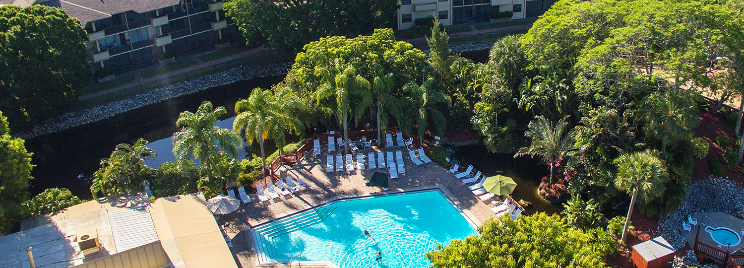 Aerial view of hotel pool with loungers at trees