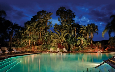 Property pool lit up at night with palm trees in the back