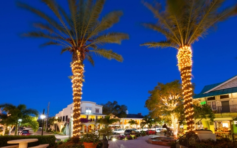Shopping plaza at night with lights on palm tree trunks