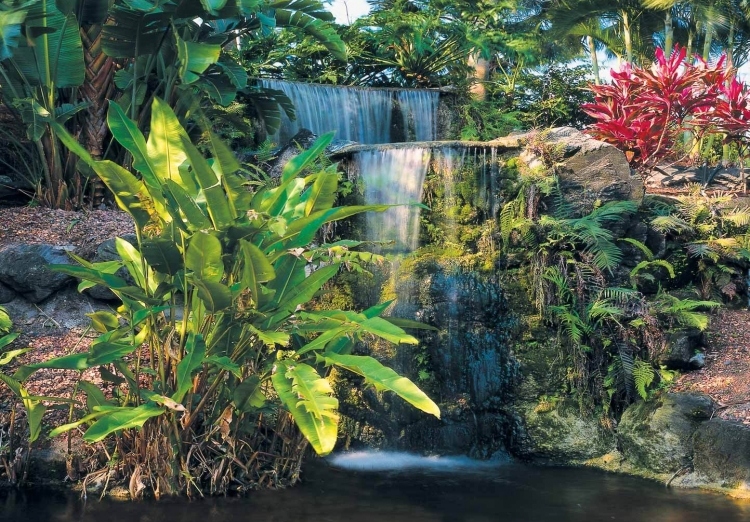 Waterfall within tropical greenery