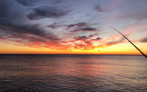 sunset over ocean iwth fishing pole in frame