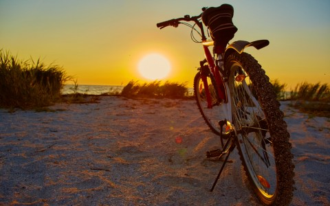 Bike Around the Region to Learn About Islamorada and Its History | Pelican Cove Inn