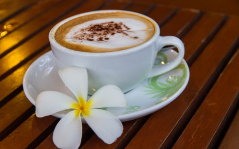 cup of coffee with plumeria flower