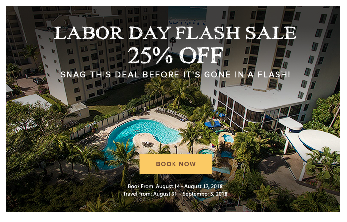 Labor Day Flash Sale Pop Up 25 percent off
