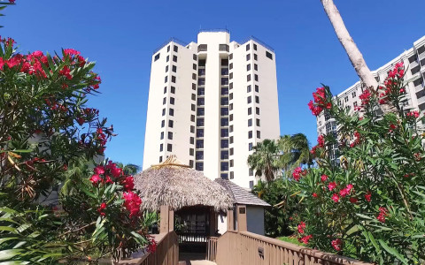 Video thumbnail - blooming flowers line a bridge and tiki hut leading up to a hotel building