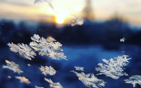 snowflakes in sunset