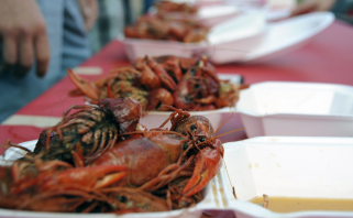 Plates of Crawfish Lined Up at  Festival