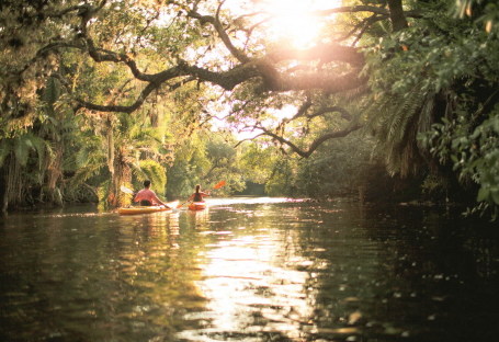 Two people canoeing through everglades waters