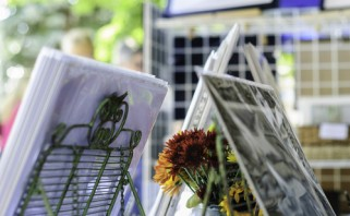 flowers and photographs on display at arts and crafts show