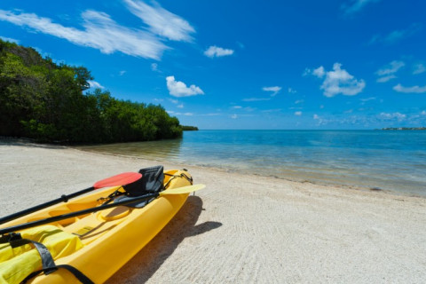 kayak by the beach