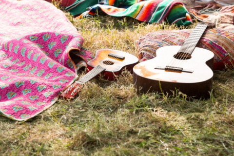 guitars on the grass
