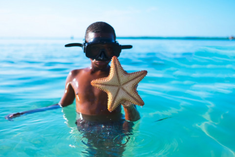 young boy holding starfish
