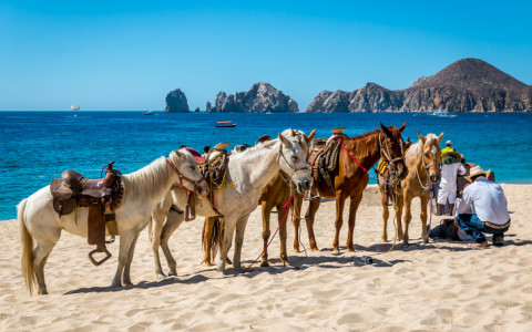 How To Get Around in Los Cabos