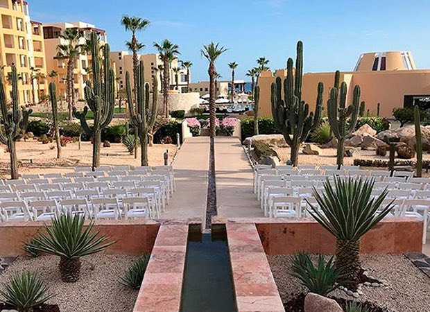 ceremony set up outside with surrounding succulents