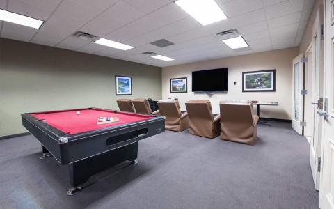 movie and pool table room