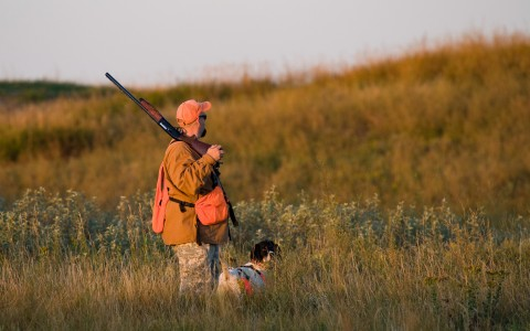 Man and dog hunting