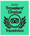 traveler choice award