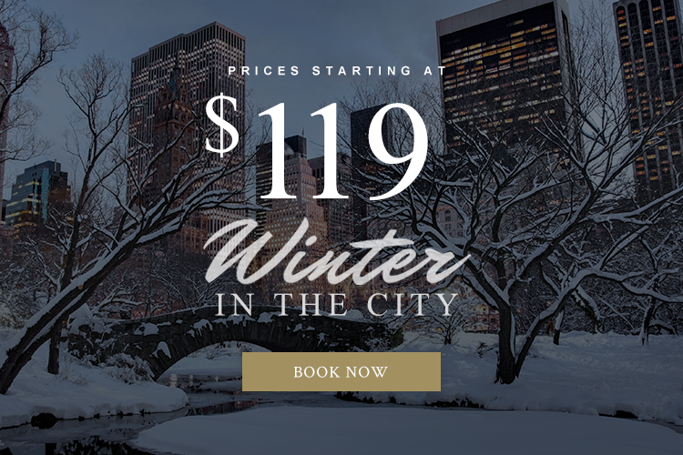 Winter in the city 119 Dollar Special