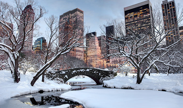 bridge and bare trees in New York City covered with snow