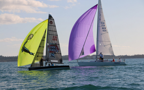 Two sail boats with green & purple sails on water