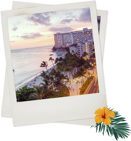 Polaroid of oceanfront building and palm trees