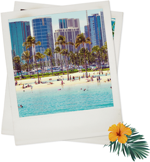Polaroid of beach with palm trees and buildings in background